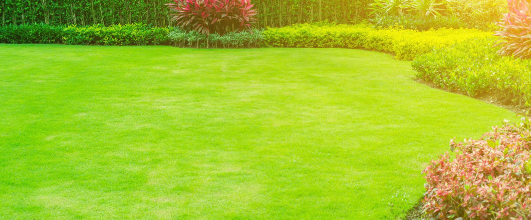 lawn care in Berne, IN